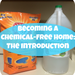 Becoming a Chemical Free Home – The Introduction