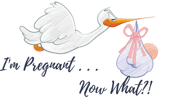 I'm Pregnant … Now What?! Quick Start Guide to Your Pregnancy
